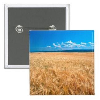 North America, USA, Idaho. Barley field in Pinback Buttons