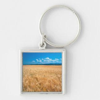 North America, USA, Idaho. Barley field in Keychain