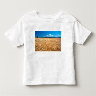 North America, USA, Idaho. Barley field in Toddler T-shirt