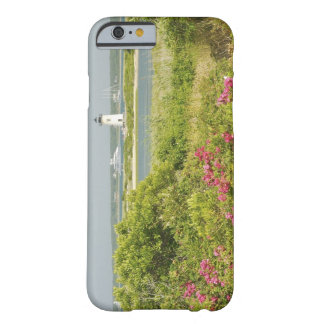 North America, USA, Massachusetts, Martha's Barely There iPhone 6 Case