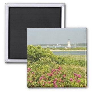 North America, USA, Massachusetts, Martha's 2 Inch Square Magnet