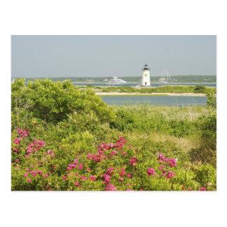 North America, USA, Massachusetts, Martha's Postcard