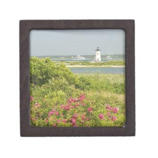 North America, USA, Massachusetts, Martha's Premium Keepsake Box