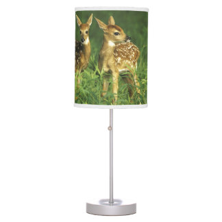 North America USA Minnesota White-tailed 2 Desk Lamps