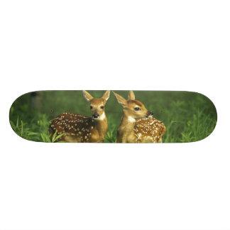 North America USA Minnesota White-tailed 2 Custom Skateboard