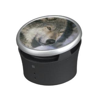 North America, USA, Minnesota. Wolf Canis 3 Bluetooth Speaker
