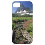 North America, USA, Montana, Glacier National 3 iPhone 5 Cases
