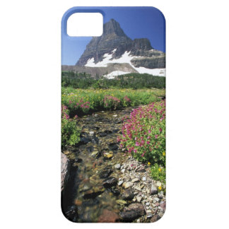 North America, USA, Montana, Glacier National 3 iPhone SE/5/5s Case