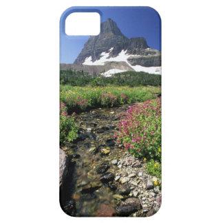 North America, USA, Montana, Glacier National 3 iPhone SE/5/5s Case