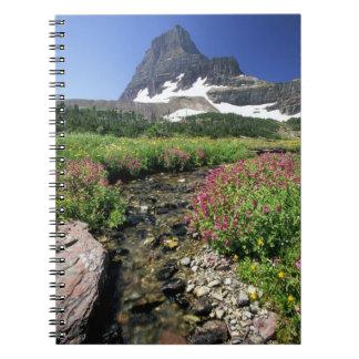 North America, USA, Montana, Glacier National 3 Spiral Notebook