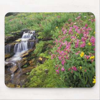 North America, USA, Montana, Glacier National 4 Mouse Pad
