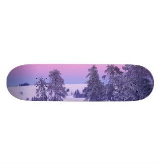 North America, USA, Montana, Yellowstone Skateboard