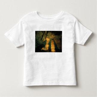 North America, USA, New Mexico, Carlsbad Toddler T-shirt