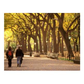 North America, USA, New York, New York City. 11 Postcard