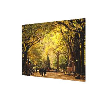 North America, USA, New York, New York City. 6 Canvas Print