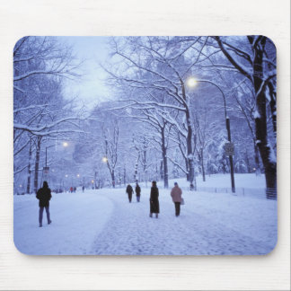 North America, USA, New York, New York City. 8 Mouse Pad