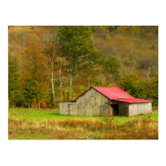 North America, USA, North Carolina, rural Postcard