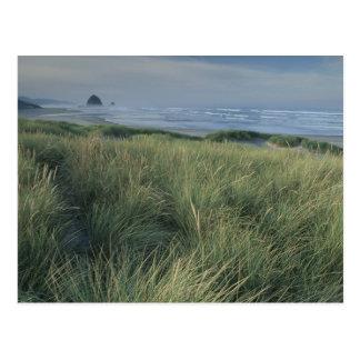 North America, USA, Oregon, Canon Beach, Postcard