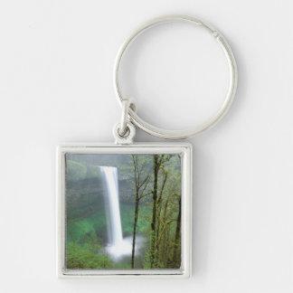 North America, USA, Oregon, Silver Falls State Keychain