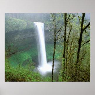 North America, USA, Oregon, Silver Falls State Poster