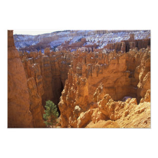North America, USA, Utah, Bryce Canyon 2 Photo Print