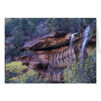 North America, USA, Utah, Zion National Park. 3 Cards