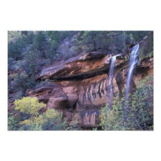 North America, USA, Utah, Zion National Park. 3 Photo Print