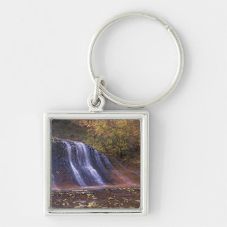 North America, USA, Utah, Zion National Park. Keychain