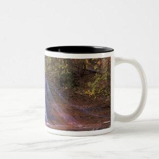 North America, USA, Utah, Zion National Park. Two-Tone Coffee Mug