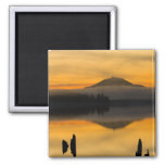 North America, USA, WA, Olympic National Park. 2 Inch Square Magnet