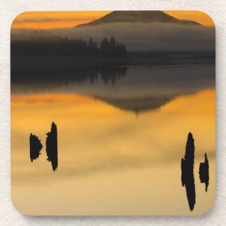 North America, USA, WA, Olympic National Park. Coaster