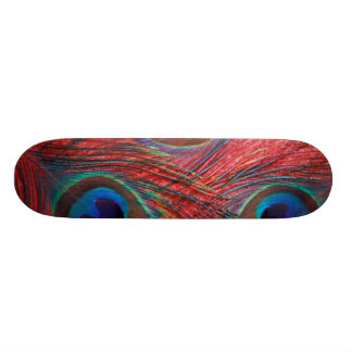 North America, USA, WA, Redmond, Peacock Skateboard Deck
