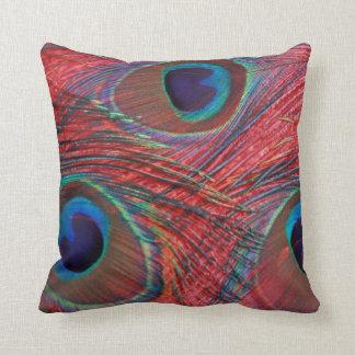 North America, USA, WA, Redmond, Peacock Throw Pillow