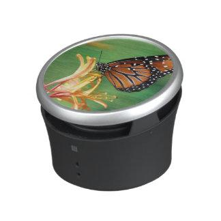 North America, USA, WA, Seattle, Woodland Park Bluetooth Speaker
