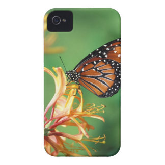North America, USA, WA, Seattle, Woodland Park Case-Mate iPhone 4 Case