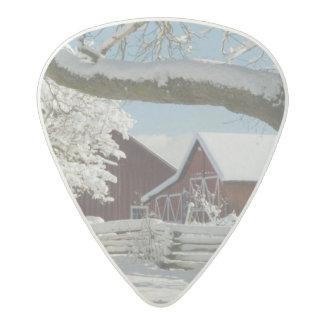 North America, USA, WA, Whidbey Island. 2 Acetal Guitar Pick