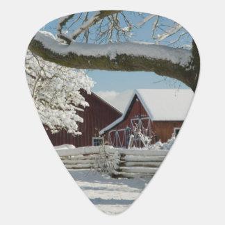 North America, USA, WA, Whidbey Island. 2 Guitar Pick