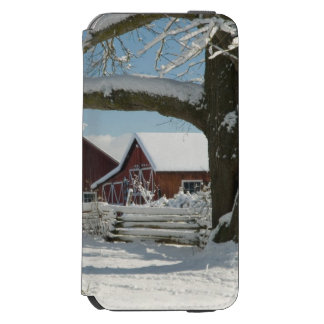 North America, USA, WA, Whidbey Island. 2 iPhone 6/6s Wallet Case