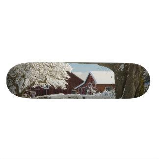 North America, USA, WA, Whidbey Island. 2 Custom Skateboard