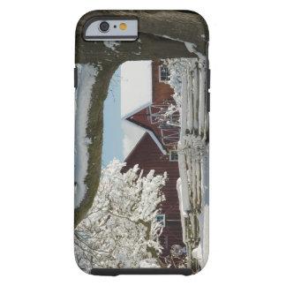 North America, USA, WA, Whidbey Island. 2 Tough iPhone 6 Case