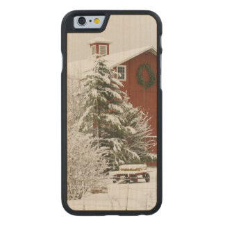 North America, USA, WA, Whidbey Island. Carved® Maple iPhone 6 Case