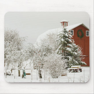 North America, USA, WA, Whidbey Island. Mouse Pad