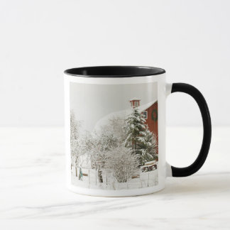 North America, USA, WA, Whidbey Island. Mug