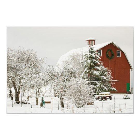 North America, USA, WA, Whidbey Island. Photo Print