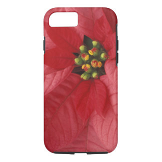 North America, USA, WA, Woodinville, Red 2 iPhone 8/7 Case