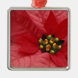 North America, USA, WA, Woodinville, Red 2 Metal Ornament