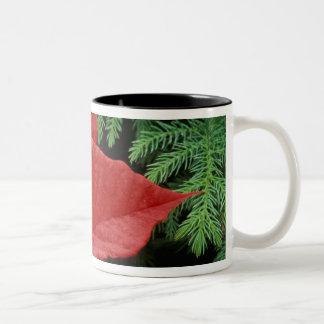 North America, USA, WA, Woodinville, Red Two-Tone Coffee Mug