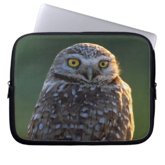 North America; USA; Washington, Burrowing Owl Computer Sleeve