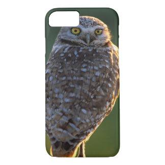 North America; USA; Washington, Burrowing Owl iPhone 7 Case
