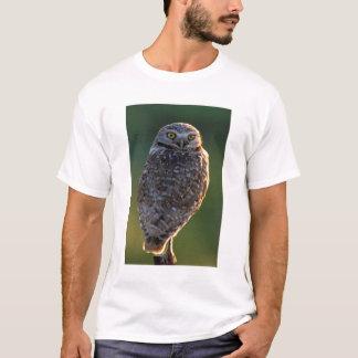 North America; USA; Washington, Burrowing Owl T-Shirt